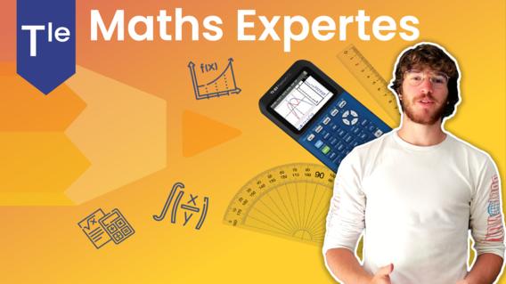 Terminale maths expertes option